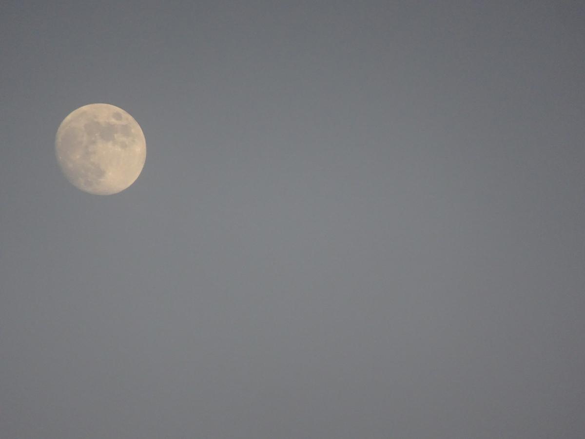 full moon close up s