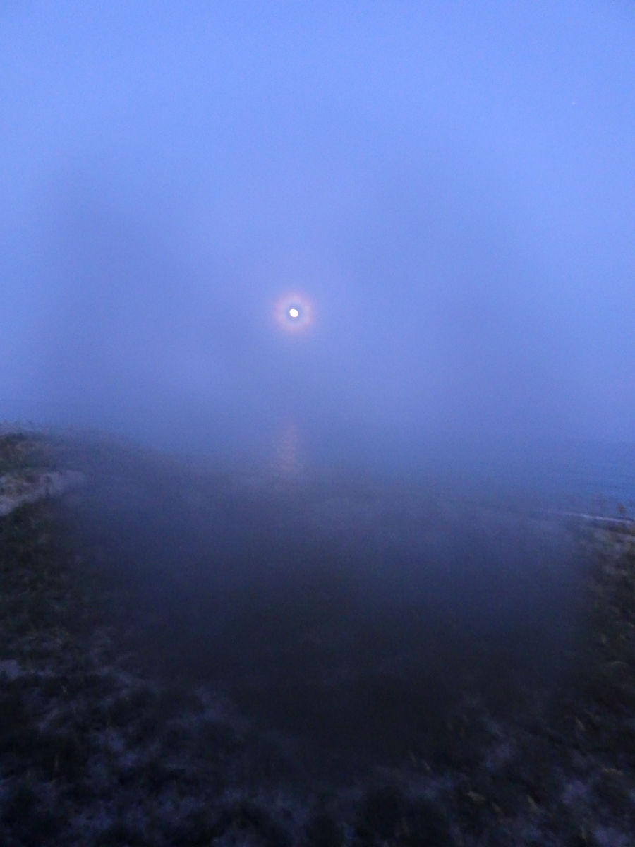 full moon photo 1s