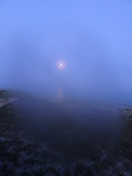 moon music 1