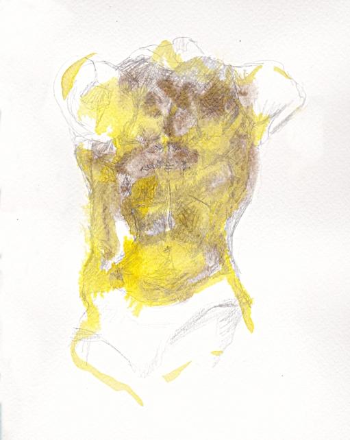 torso 2s