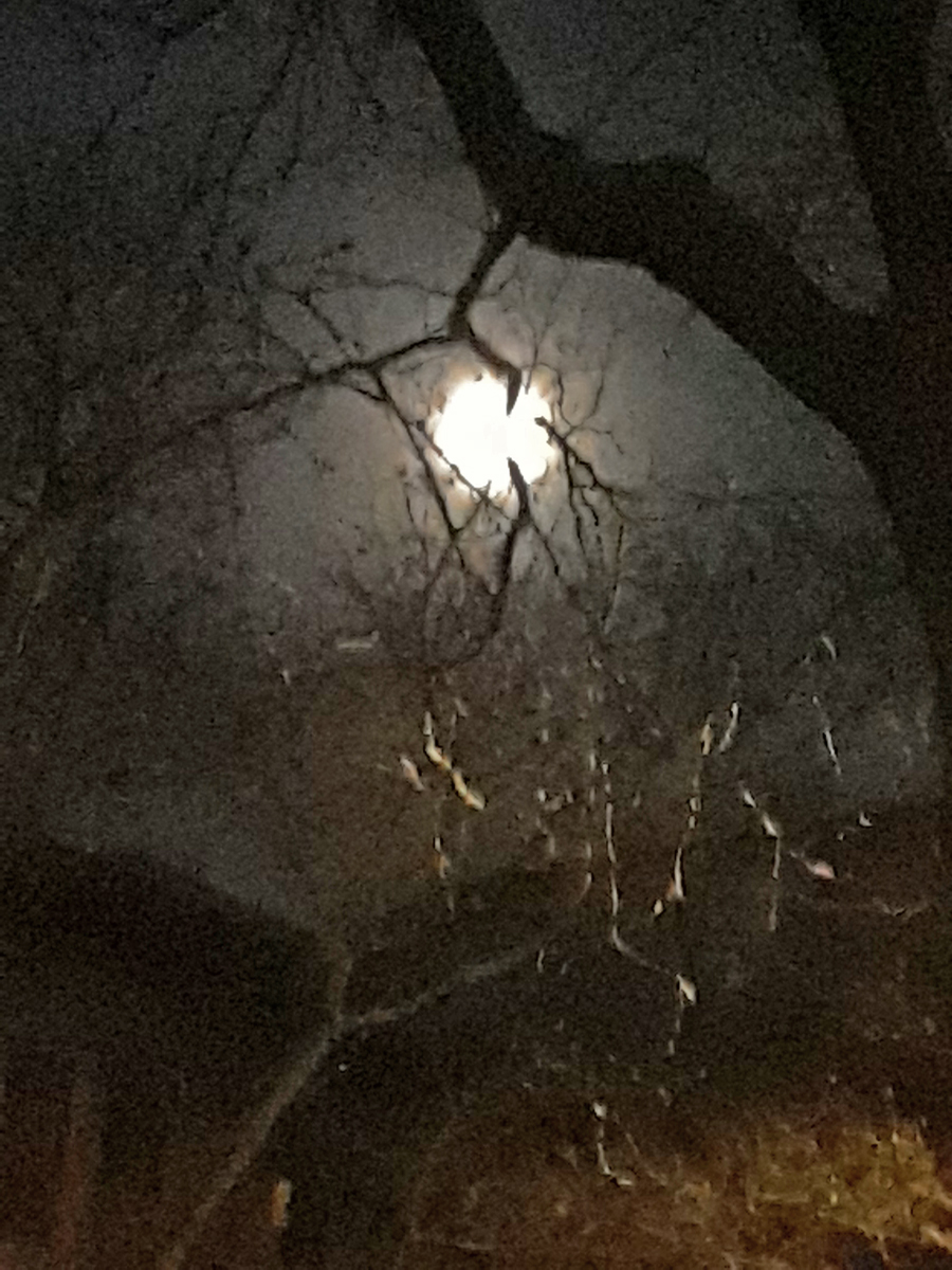 dec moon shadows 3s