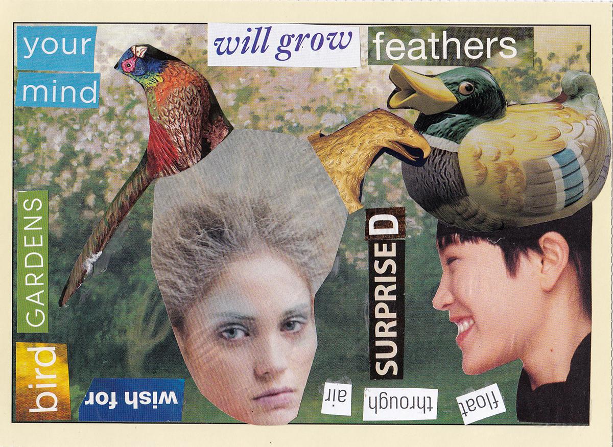 postcard 15s