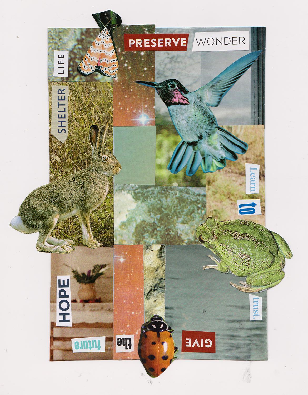 postcard 21s
