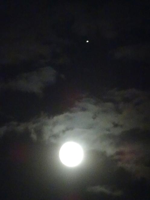 august moon jupiter s