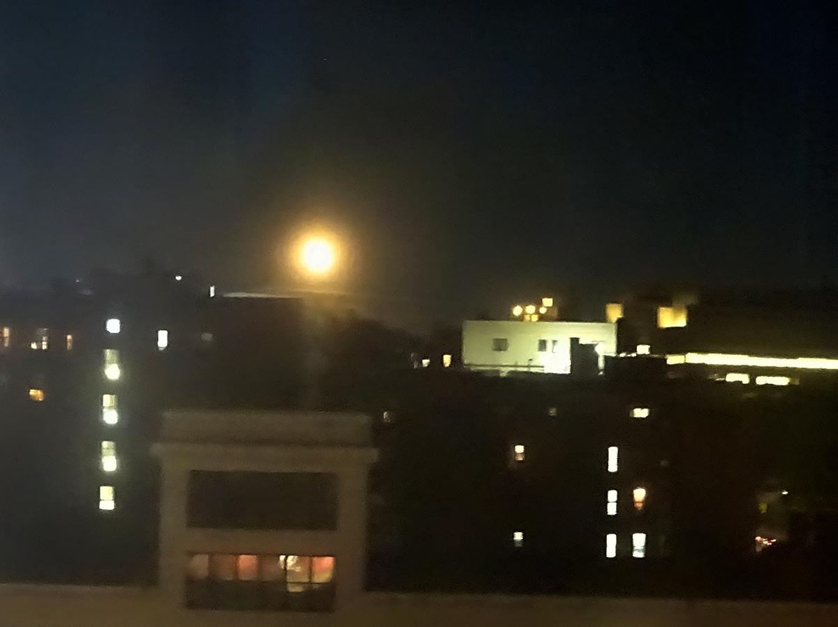 august moon yellow s