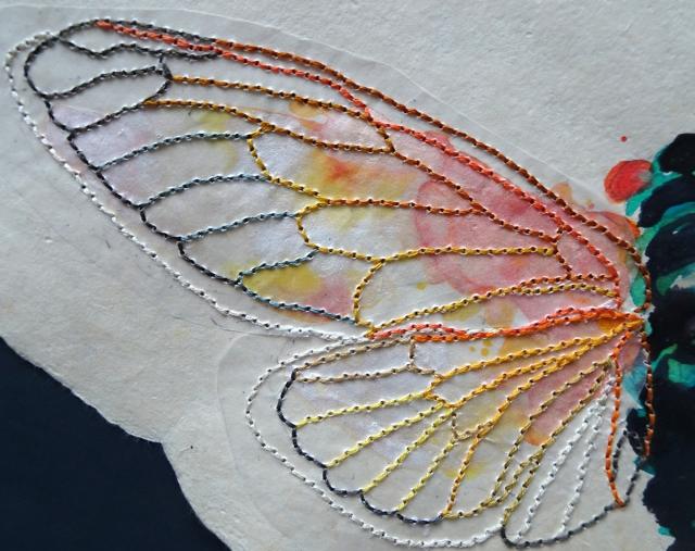 cicada close up 2s