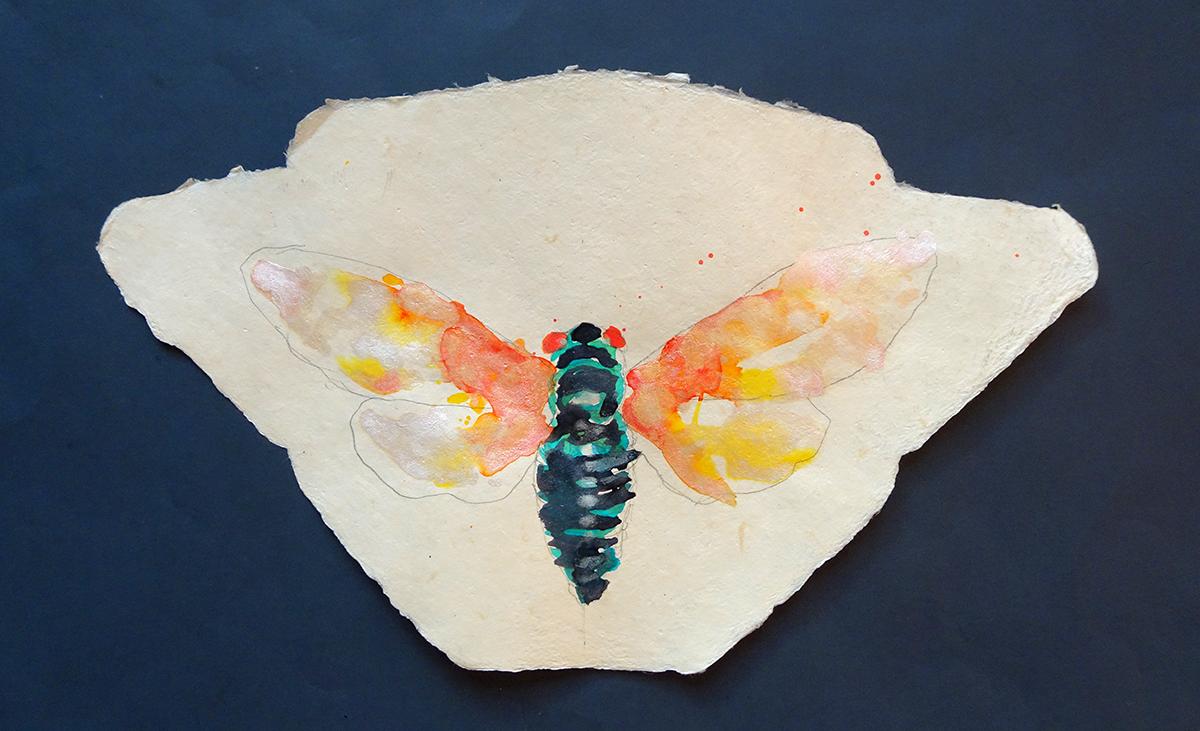 cicada painting a