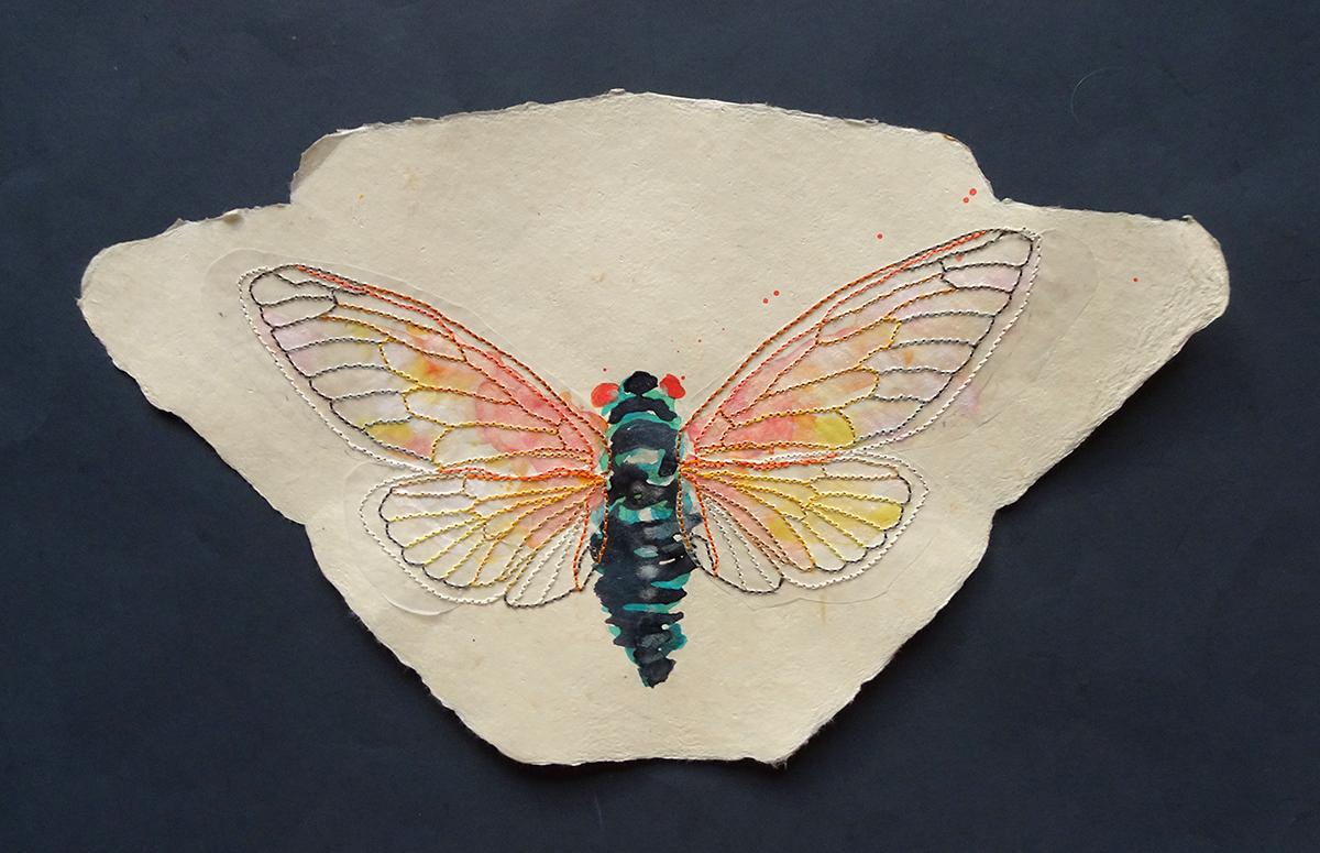 cicada wings a